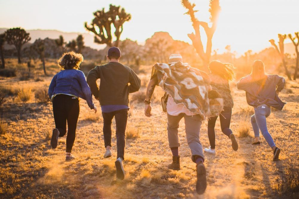 Groepscoaching voor ondernemers